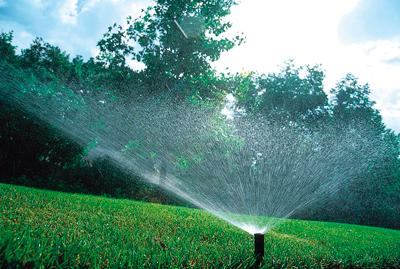 Comment Arroser Le Jardin En Ete Guide Arrosage Et Pompage